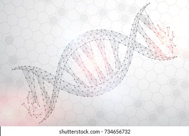 Polygonal DNA abstract image, isolated on white background. Vector closeup of concept human genome illustration. Low poly wireframe, geometry triangle, lines, dots, polygons, shapes