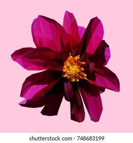 polygonal geometric triangle purple flower, isolated vector illustration