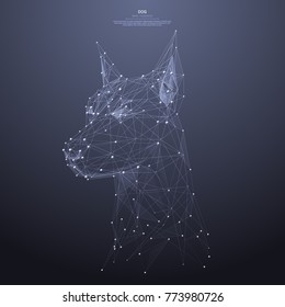Polygonal head of the dog low poly wireframe. Animal concept. Vector mesh spheres from flying debris. Thin line concept. Blue structure style illustration