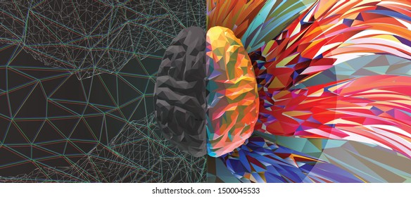 Polygonal human brain hemispheres gray left and rainbow color right brain engraving in top view illustration isolated on multicolor art background