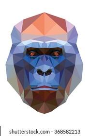 Polygonal monkey ape head low polygon isolated illustration on white background