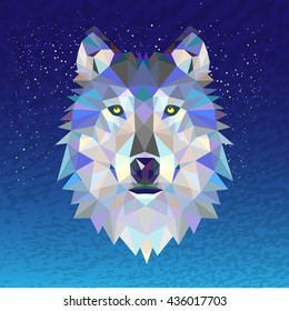 polygonal north wolf  illustration