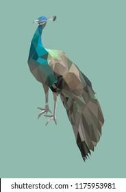 polygonal peacock bird, poly low abstract animal, vector illustration