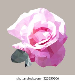 polygonal pink rose, polygon geometric flower, vector illustration