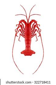 polygonal rock lobster, polygon sea life, isolated vector illustration
