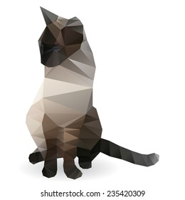 polygonal siamese cat isolated on white background