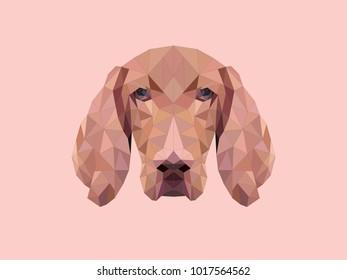 Polygonal style dog vizsla. Vector abstract illustration