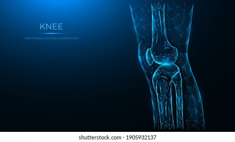Polygonal vector illustration of the knee joint side view. Thigh and knee made of lines and dots are isolated on a dark blue background.