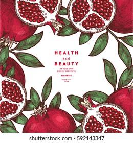 Pomegranate fruit vintage design template. Botanical fruit. Engraved pomegranate. Vector illustration