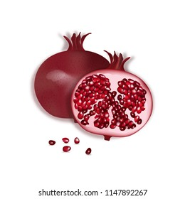 Pomegranate isolated on the white background. Vector illustration.