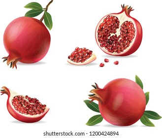 pomegranate isolated on white background.illustration vector
