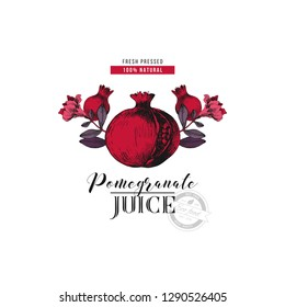 Pomegranate juice logo template with hand drawn pomegranate branches. Vector illustration