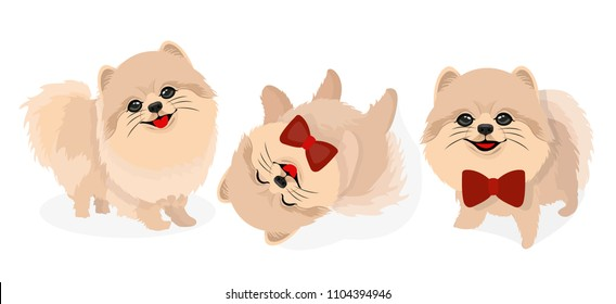 Pomeranian Dog Puppy Illustration
