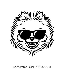 Pomeranian dog wearing sunglasses - isolated vector illustration