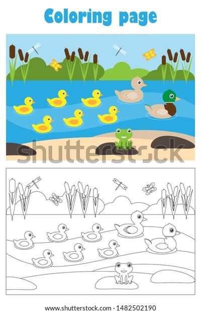 Color a Mandala: Pond Life | Mandala coloring pages, Mandala ... | 620x400