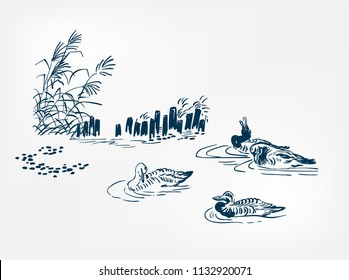 pond ducks japanese vector sketch illustration engraved chinese