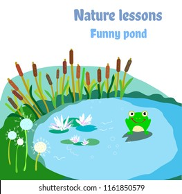 Pond, frog and flowers - illustration for nature ecosystem. Vector graphic