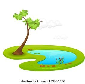 Pond - Illustration