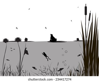 pond life, under the water, river's animal, shadows, black and white, vector