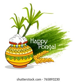 Pongal (Thai Pongal is a Tamil harvest festival)