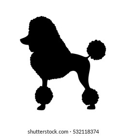Poodle dog silhouette vector illustration