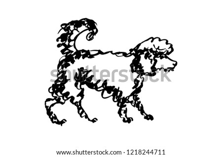 Poodle doodle. Vector black and white illustration for your design. Ink dog drawing standing in side view silhouette isolated on white.