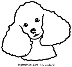 Poodle head silhouette black white