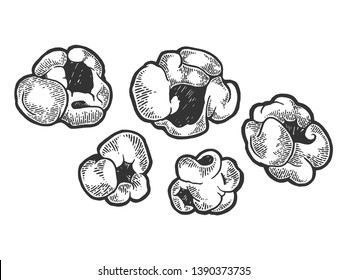 Popcorn food sketch engraving vector illustration. Scratch board style imitation. Black and white hand drawn image.