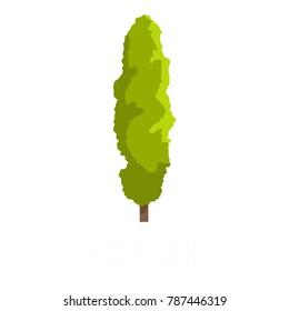 Poplar tree icon. Flat illustration of poplar tree vector icon isolated on white background