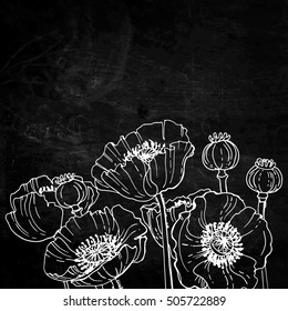 Poppies. Flowers line drawn on black background. Vector sketch.
