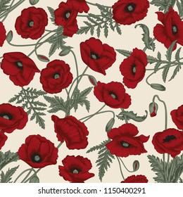 Poppies. Vector seamless background in vintage style. Plant pattern. Botanical drawing.