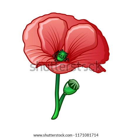 Poppy Drug Flower Icon Cartoon Poppy Stock Vektorgrafik Lizenzfrei