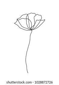 Poppy flower line art. Minimalist contour drawing. One line artwork