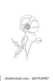 Poppy flower line art. Minimalist contour continuous drawing. Abstract and simple design