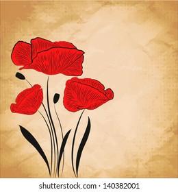 Poppy flower on grange background