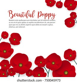 A poppy flower vector