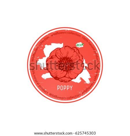 Poppy Flower Vector Illustration Medicinal Herb Stock Vector