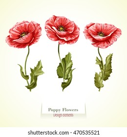 Watercolor poppies images stock photos vectors shutterstock poppy flowers illustration watercolor hand drawn set of three poppy flowers vector mightylinksfo