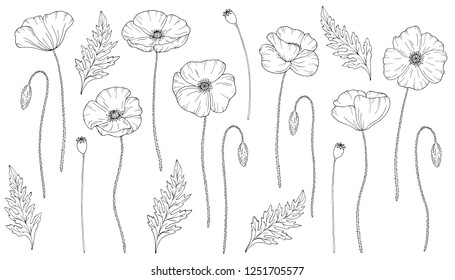 Poppy Tattoo Images Stock Photos Vectors Shutterstock