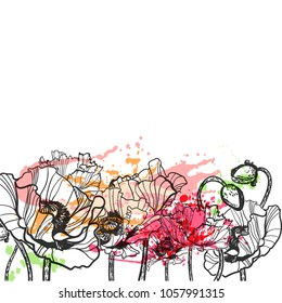poppy vector splash flower colorful summer background card
