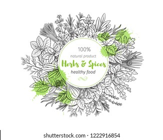 Popular culinary herbs and spice, banner. Vector illustration. Bay leaf, lemongrass, fennel, dill, cilantro and chives. Thyme, lemon balm, tarragon etc. Seasoning food design