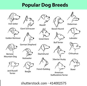 Popular Dog Breeds Profile Faces. Dog Silhouette Portraits set.