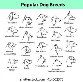 Popular Dog Breeds Profile Faces. Dog Silhouette Portraits set.