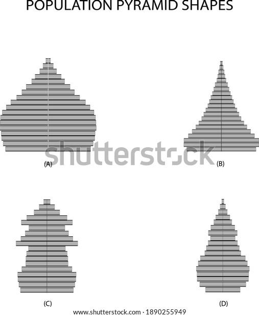 Population et démographie, Illustration de 4 types de pyramides de population ou graphique de la structure par âge Isolé sur Fond Blanc.