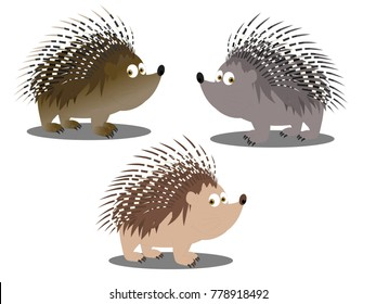 Porcupine Character Grey and Brown Vector