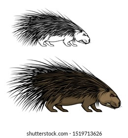 Porcupine or hedgehog animal vector mascot. Wild forest mammal with sharp spines or quills, brown fur and angry grin, predatory rodent icon of sport team, hunter club or European wildlife design