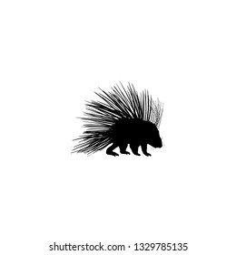 porcupine icon vector. porcupine sign on white background. porcupine icon for web and app