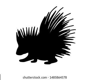 Porcupine silhouette vector illustration. Black shape of an animal.
