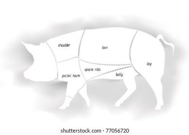Pork Meat Diagram