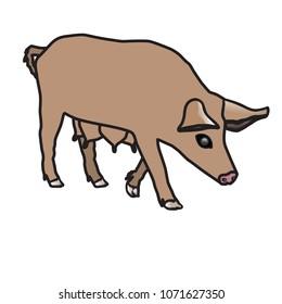pork, vector, animal